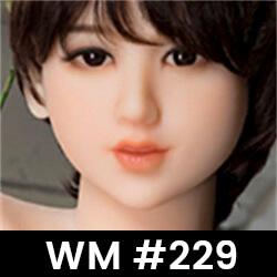 WM #229