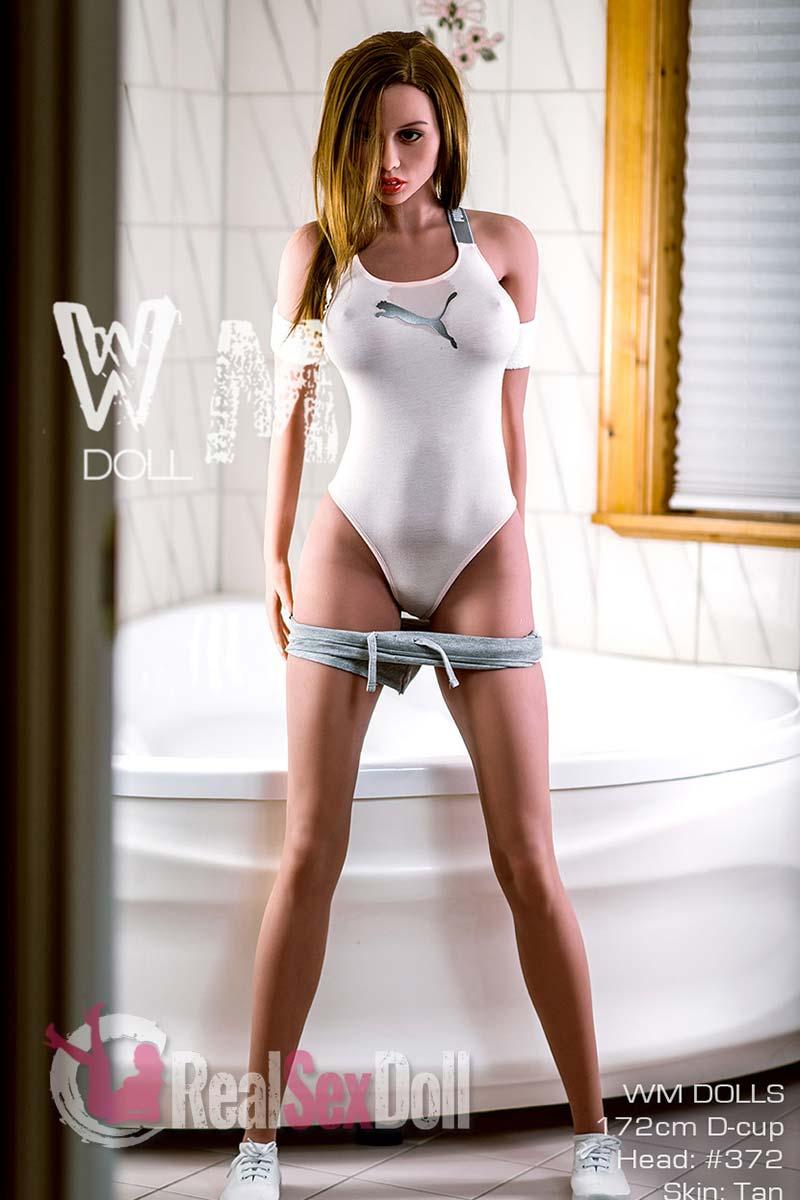 wmsd386-06