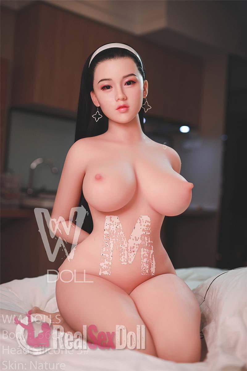 wmsd397-13