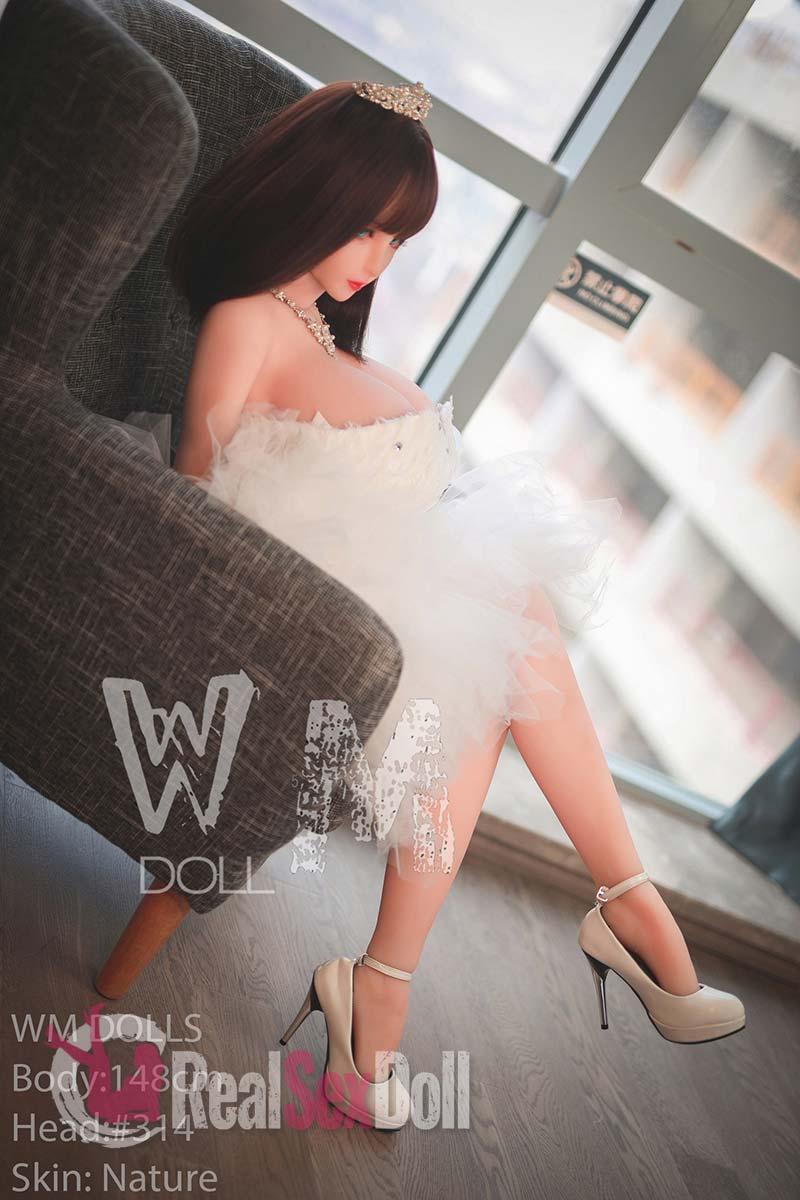 wmsd400-15
