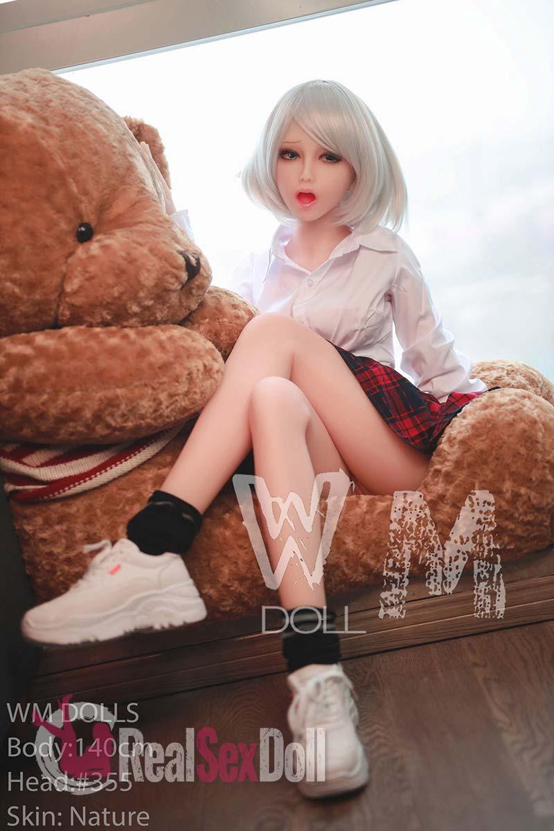 wmsd401-13