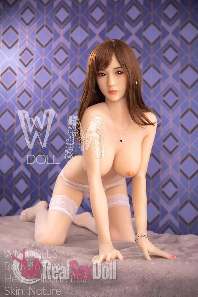 wmsd420-01