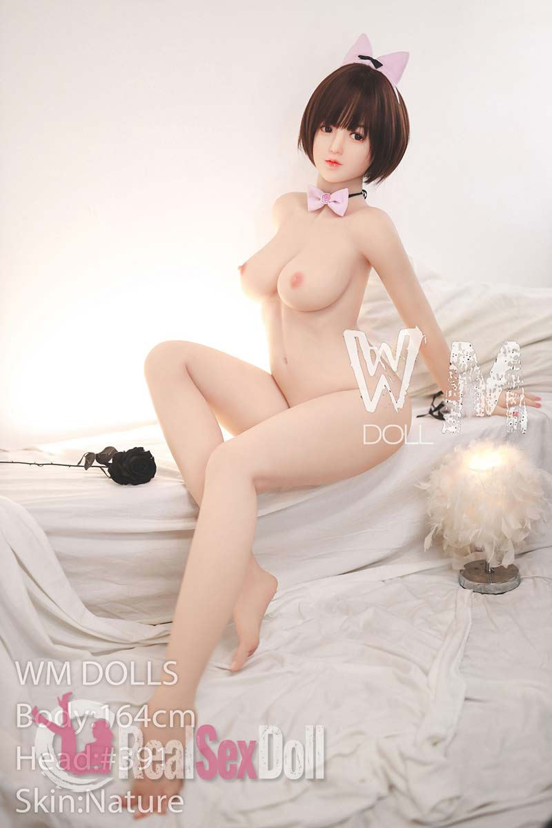 wmsd475-22