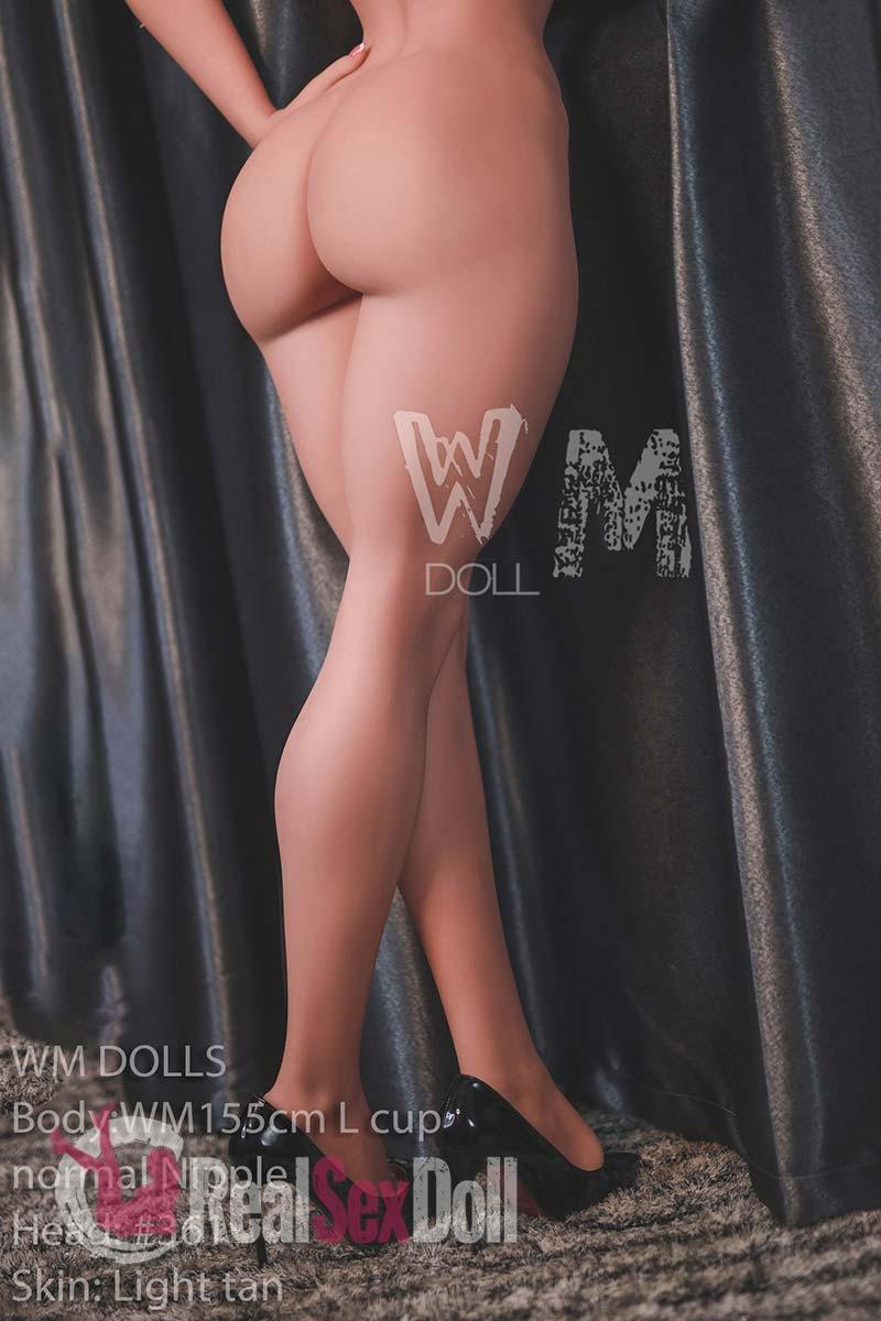 wmsd497-10