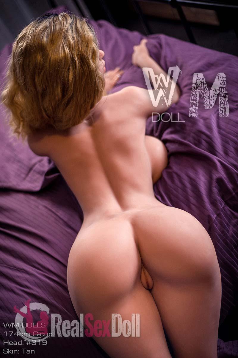 wmsd504-33