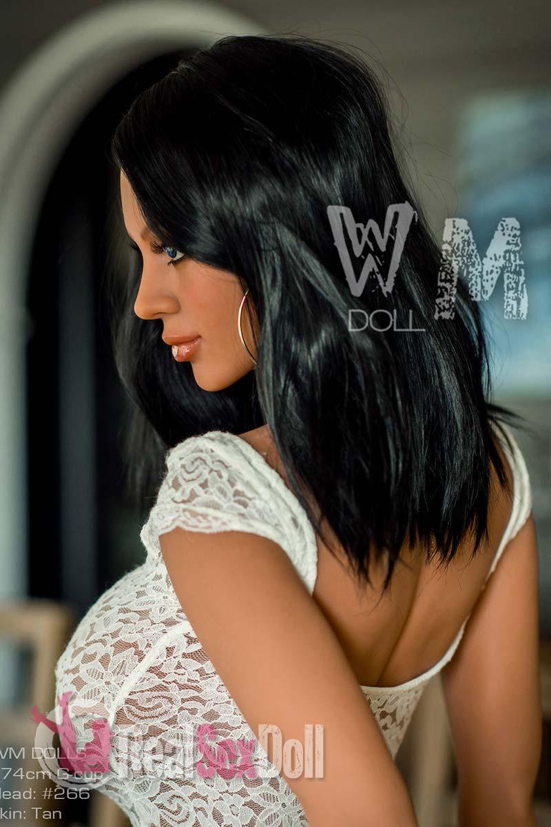 wmsd525-07