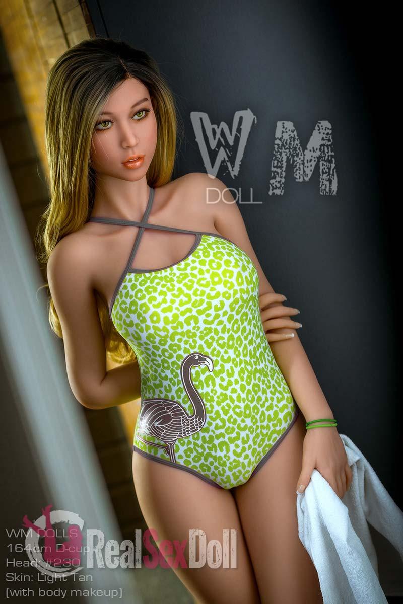 wmsd528-02