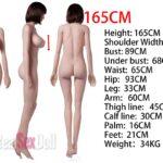 Irontech-custom-body-165cm-plus